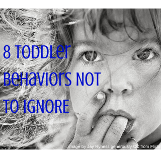 8 Toddler Behaviors NOT TO IGNORE